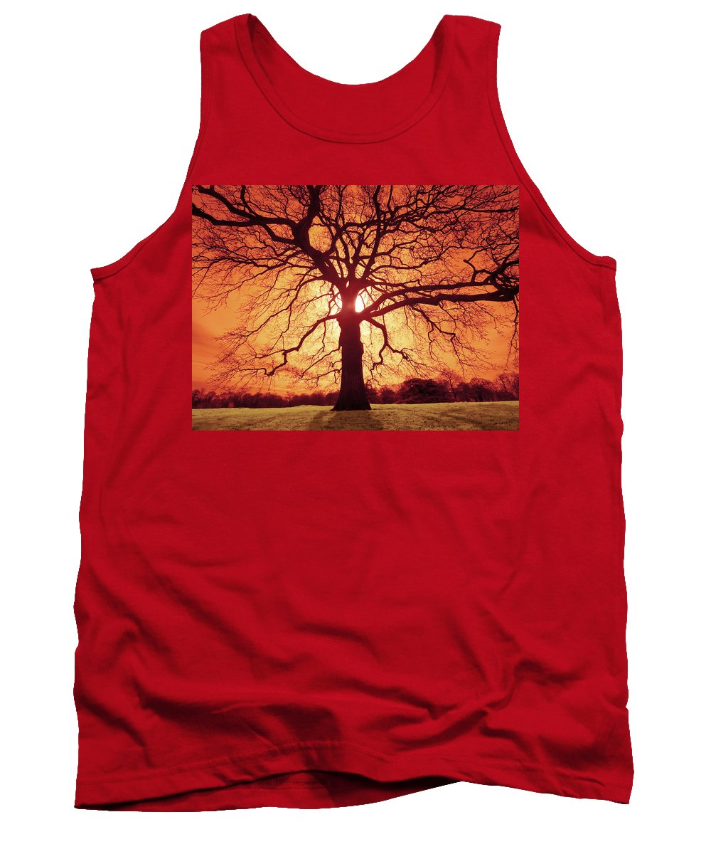 Oak Tank Top featuring the photograph Flaming Oak by Andy Linden
