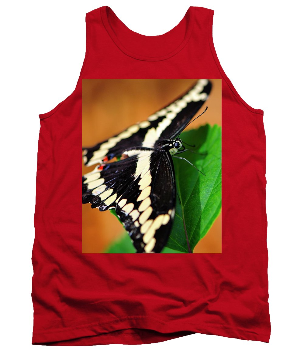 Giant Tank Top featuring the photograph Giant Swallowtail Butterfly by Bill Dodsworth