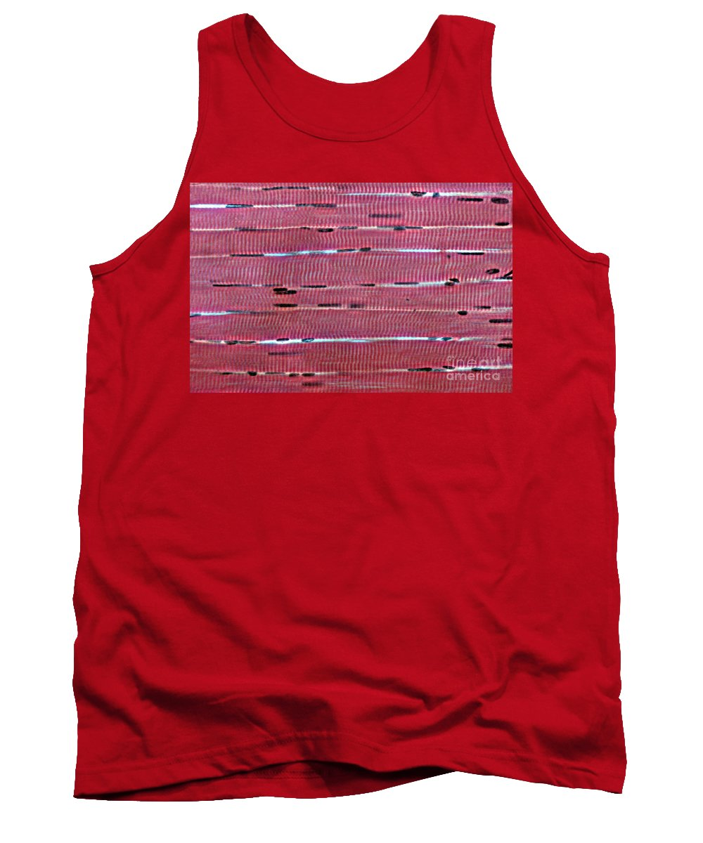 Cell Tank Top featuring the photograph Lm Of Skeletal Muscle by Eric V. Grave