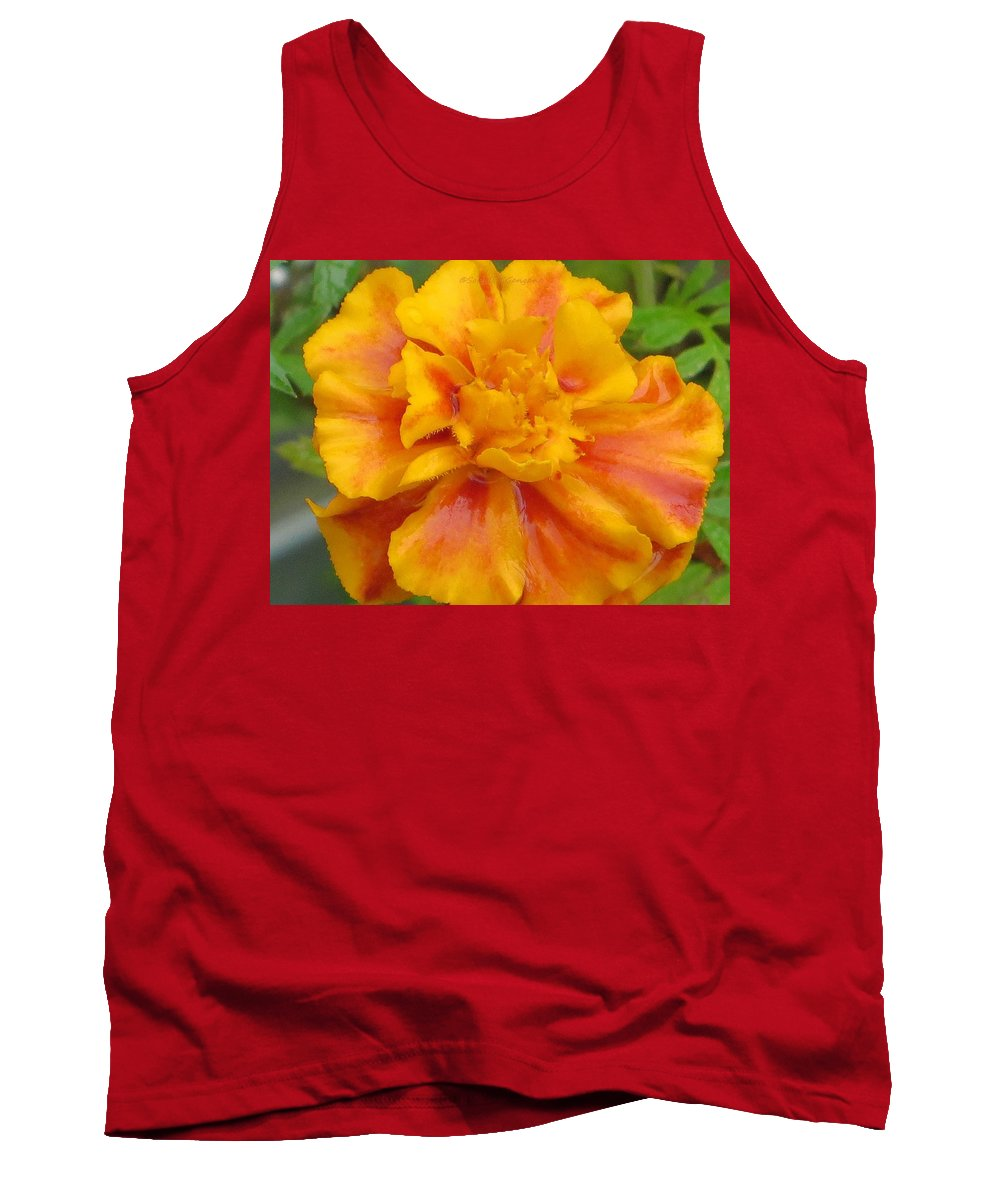 Marigold Tank Top featuring the photograph Mary's Gold by Sonali Gangane