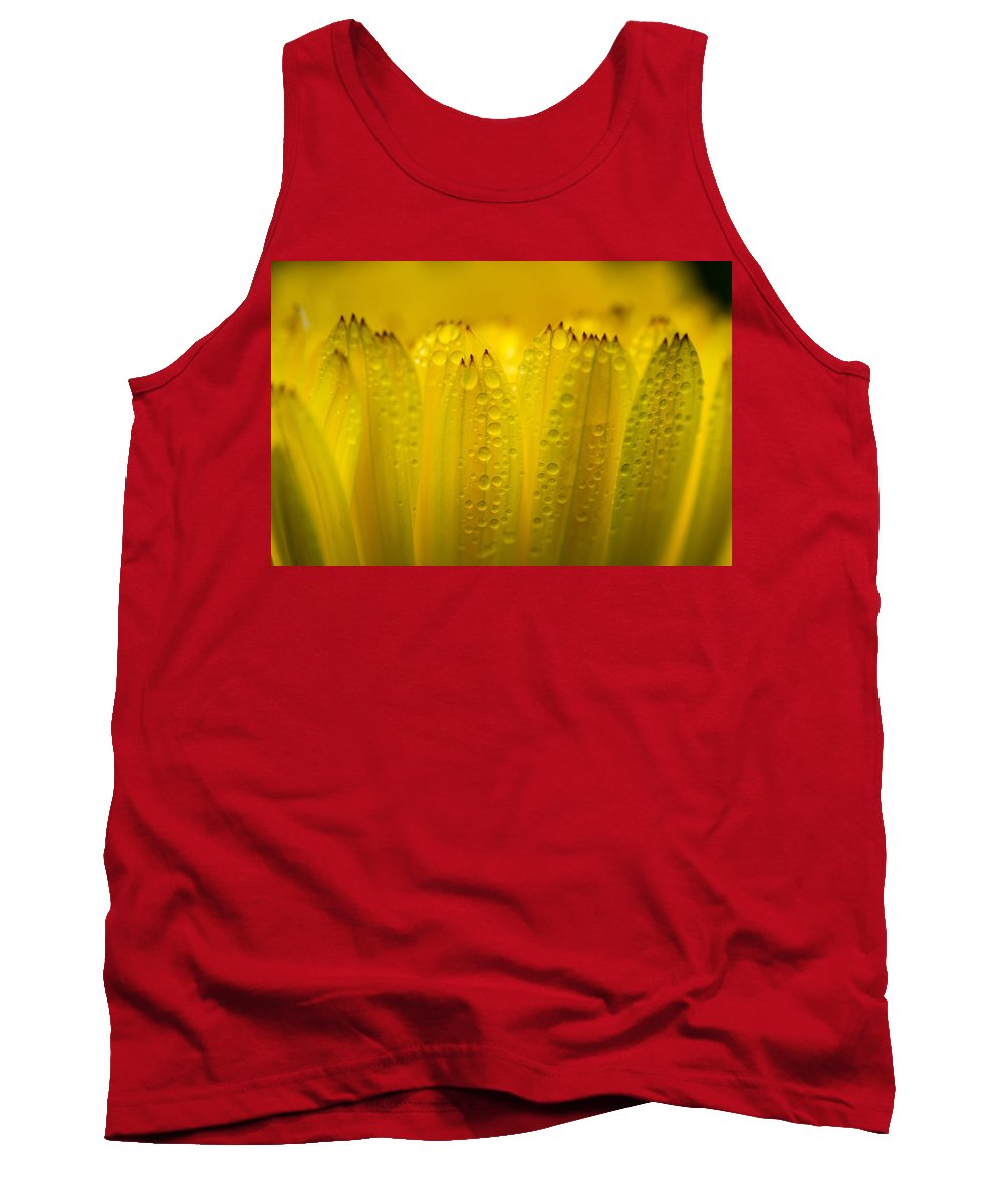 Petals Tank Top featuring the photograph Petals And Dew Drops by Greg Nyquist
