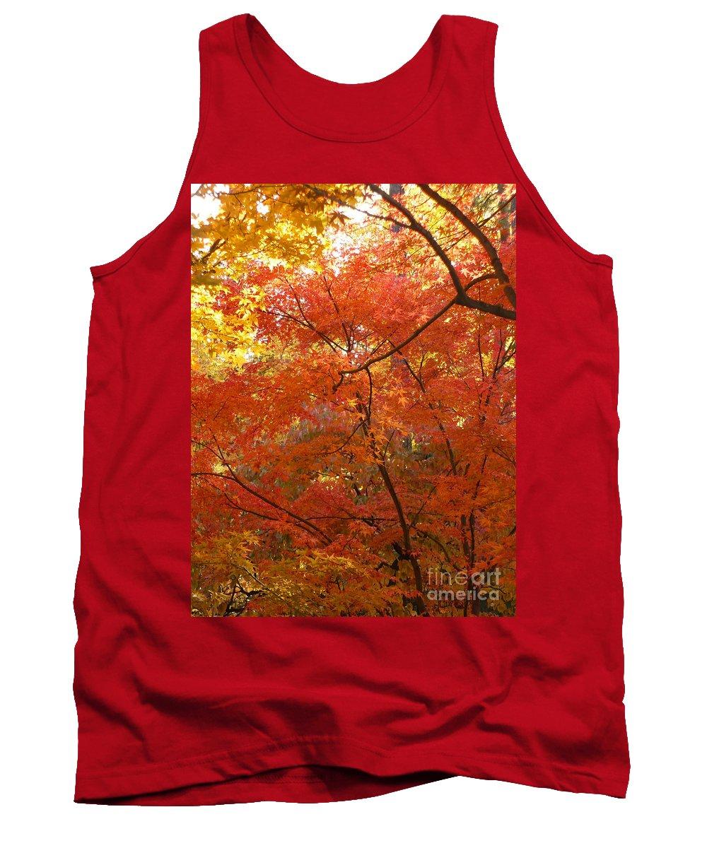 Autumn Tank Top featuring the photograph Autumn Gold by Carol Groenen