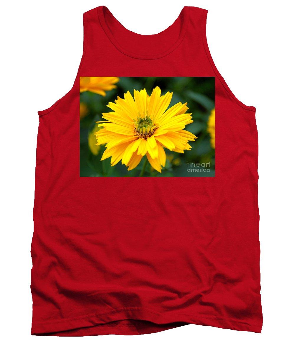 Macro Tank Top featuring the photograph Sun Flower by Joe Ng
