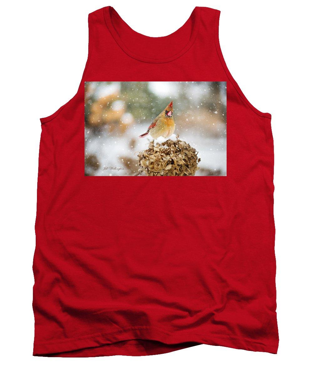 Female Cardinal Tank Top featuring the digital art Winter Birds by Jill Wellington