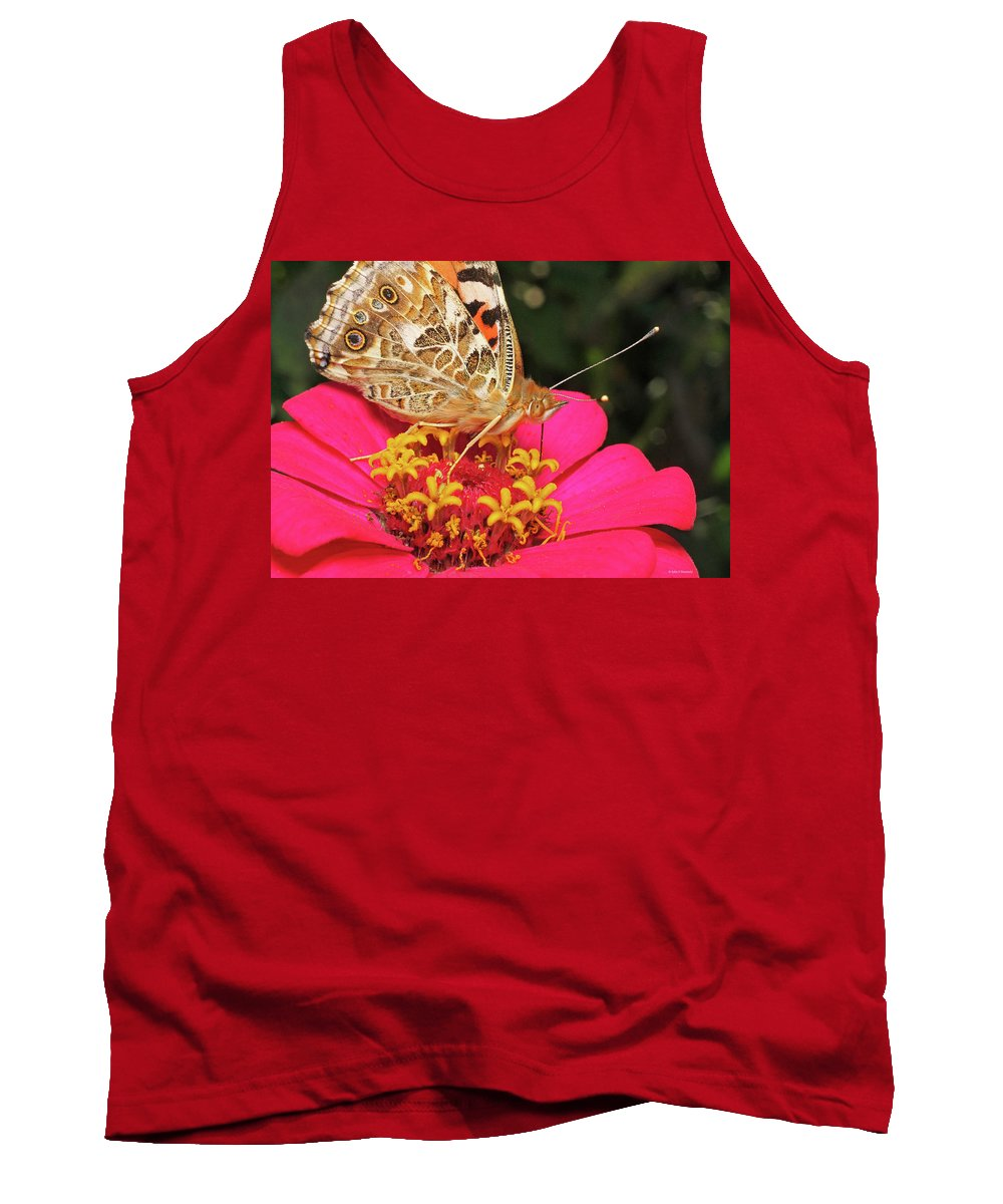 Cazenovia Butterfly Zinnia Tank Top featuring the photograph A Sip Of Zinnia by John Kennedy
