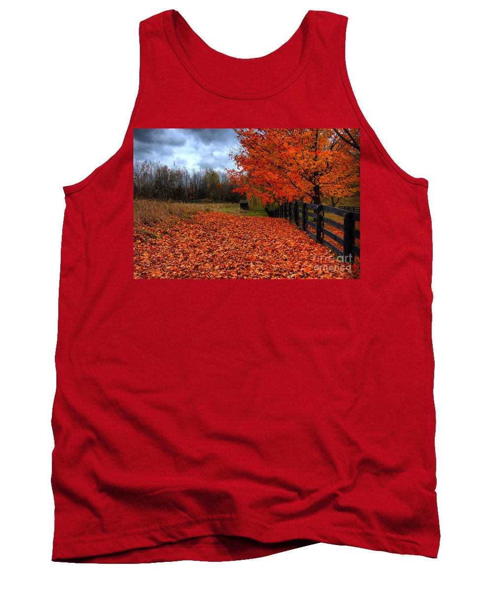 Autumn Tank Top featuring the photograph Autumn Leaves by Joe Ng