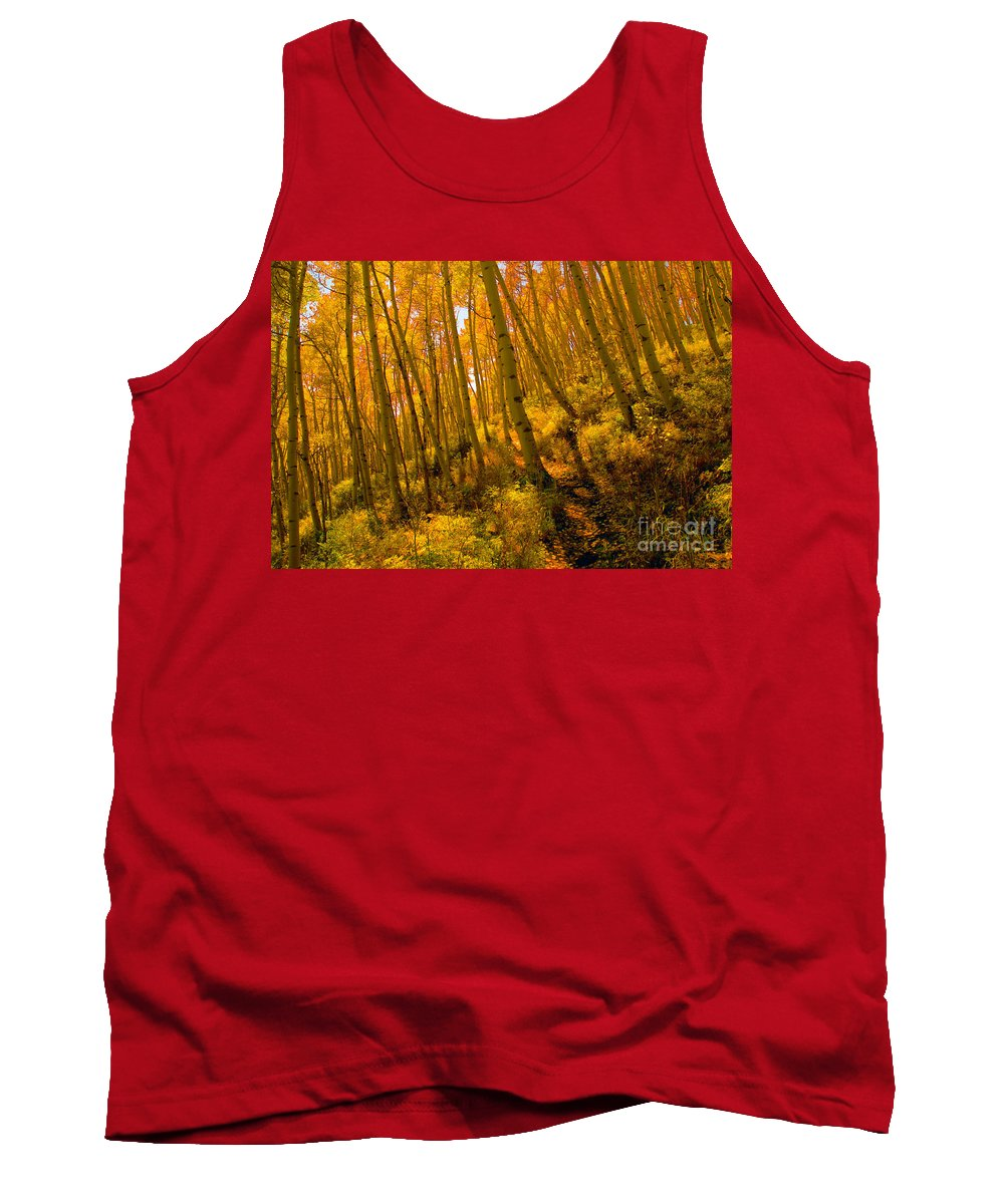 Autumn Tank Top featuring the photograph Autumn Trail by David Lee Thompson