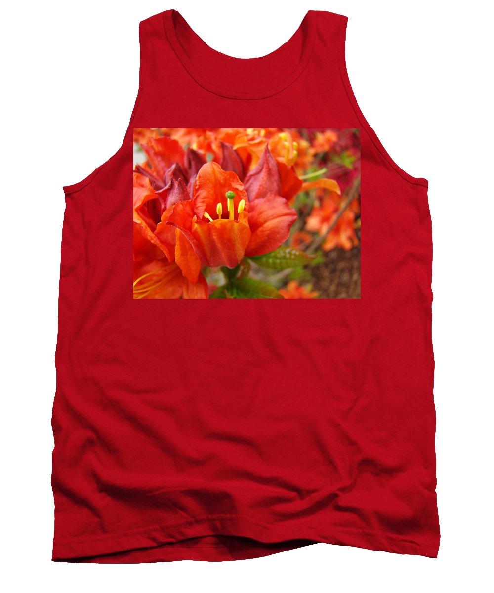 Azalea Tank Top featuring the photograph Azalea Flowers Art Prints Azaleas Gilcee Art Prints Baslee Troutman by Baslee Troutman