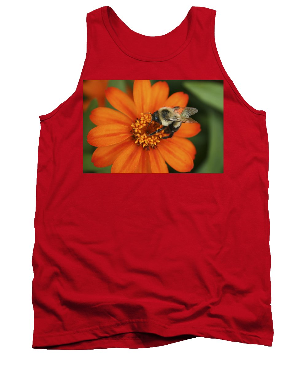 Bee Tank Top featuring the photograph Bee On Aster by Margie Wildblood