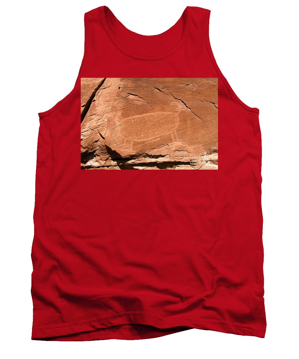Bighorn Sheep Tank Top featuring the photograph Bighorn by David Lee Thompson