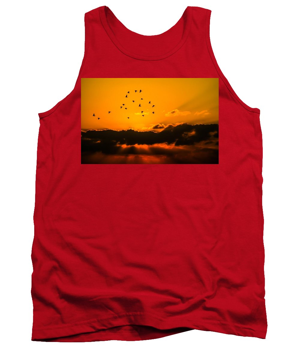 Sky Tank Top featuring the photograph Orange Sunset by Gallery Of Modern Art
