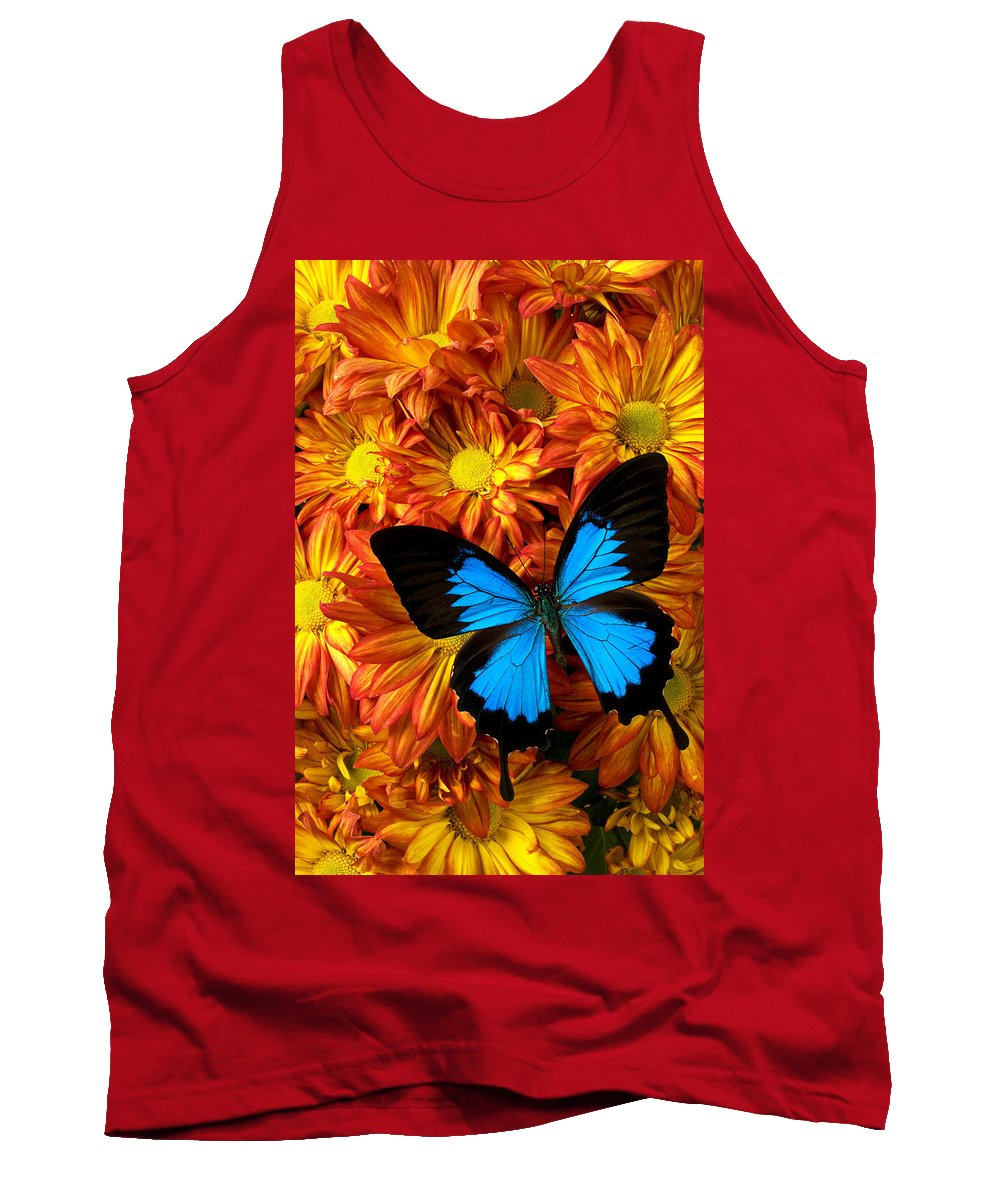 Butterfly Tank Top featuring the photograph Blue Butterfly On Mums by Garry Gay