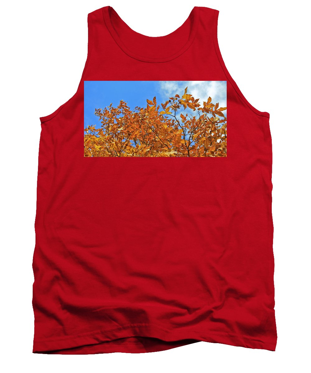 Fall Tank Top featuring the photograph Blue Sky by Teresa Mucha