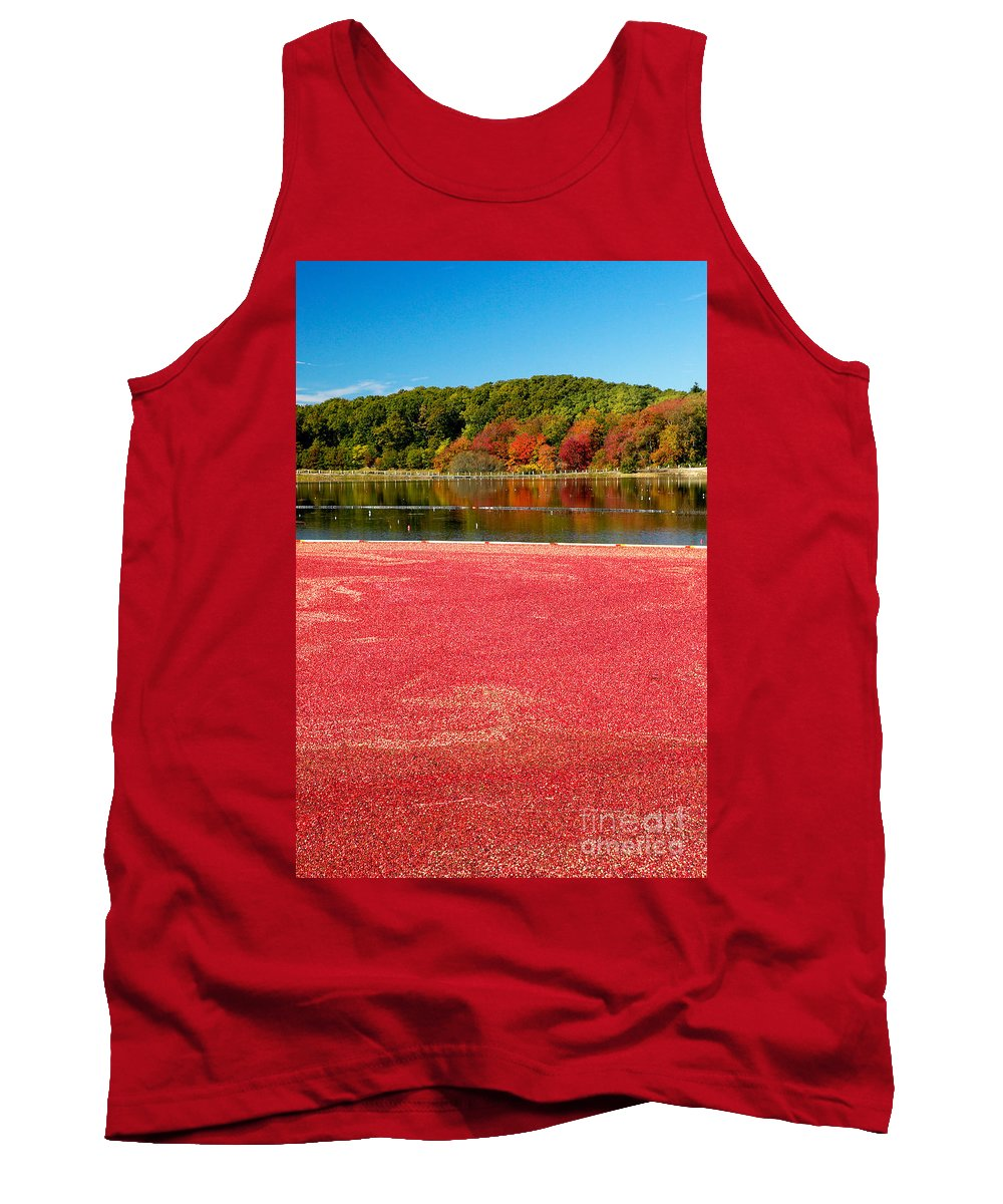Cape Cod Tank Top featuring the photograph Cape Cod Cranberry Bog by Matt Suess