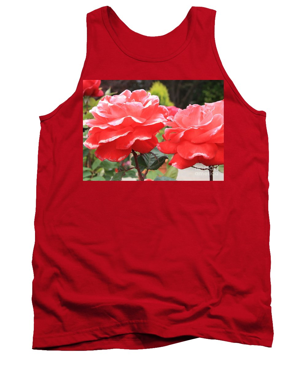 Carmel Mission Tank Top featuring the photograph Carmel Mission Roses by Carol Groenen