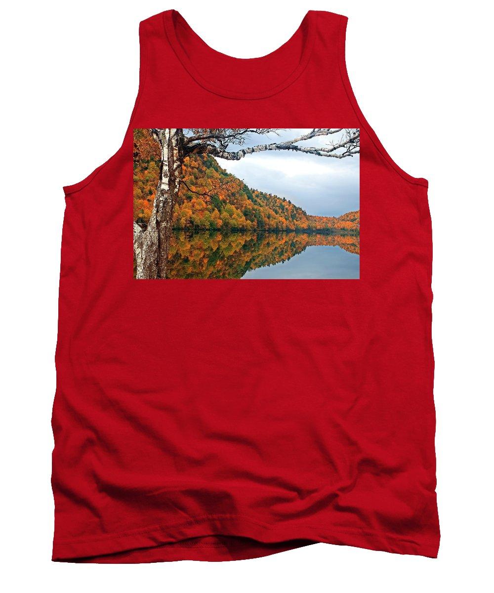 Adirondack Tank Top featuring the photograph Cascade Birch by Tony Beaver