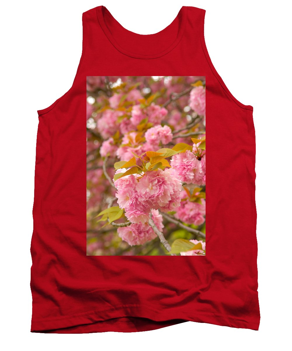 Cherry Tank Top featuring the photograph Cherry Blossom by Sebastian Musial
