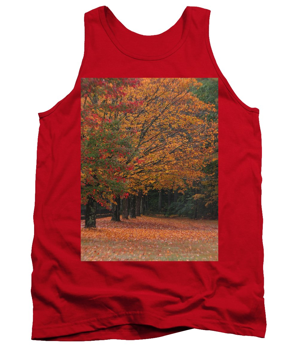 Fall Trees Tank Top featuring the photograph Colorful Trees by Michael Mooney