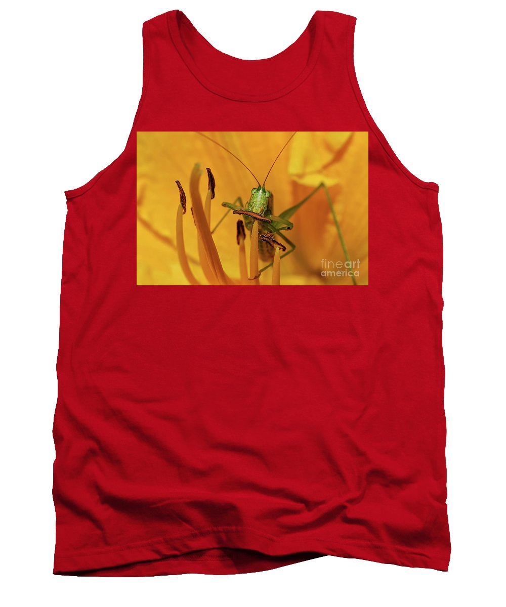 Bug Tank Top featuring the photograph Corn On The Cob by Lois Bryan