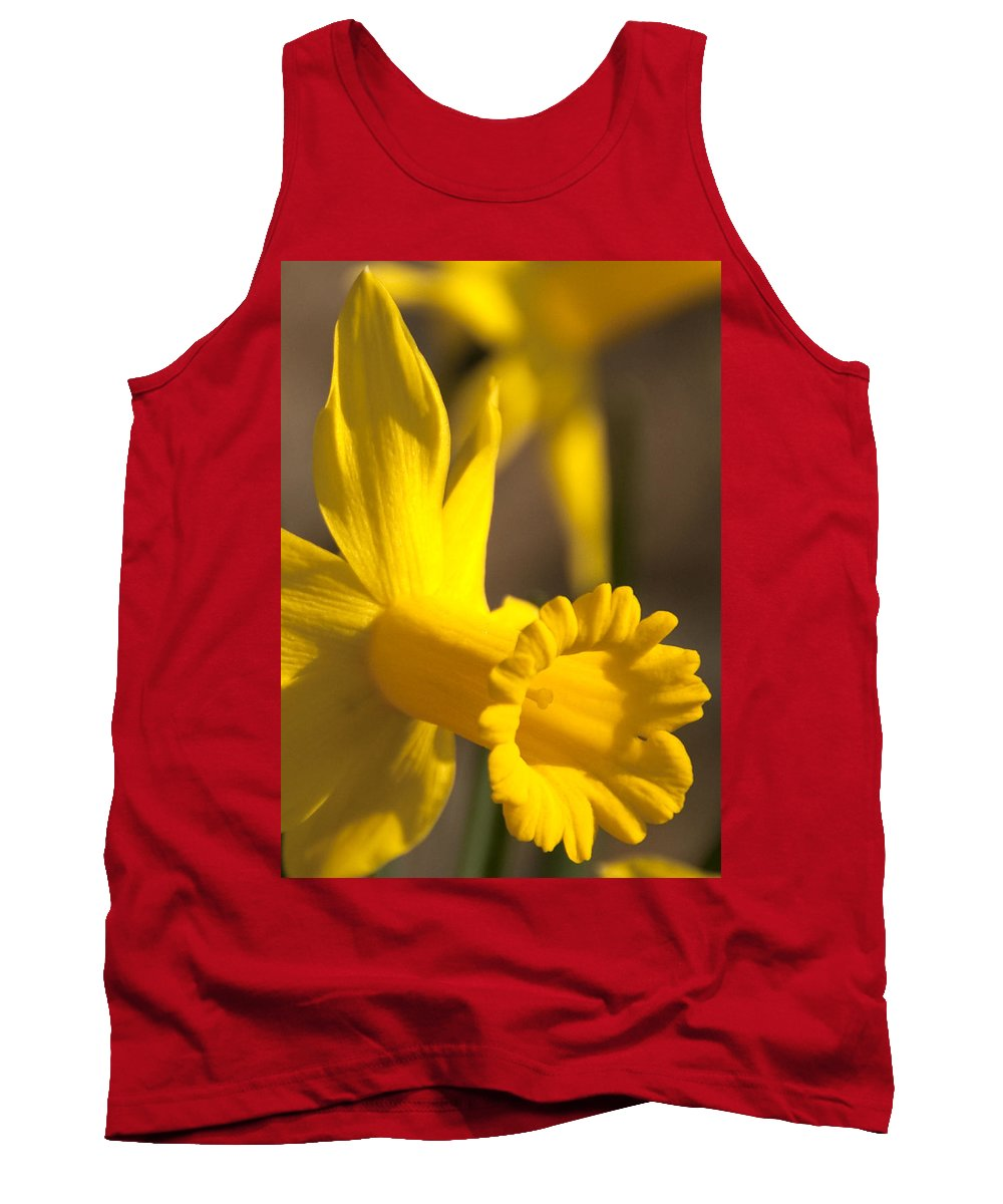 Daffodil Tank Top featuring the photograph Daffodil Yellow by Steven Natanson