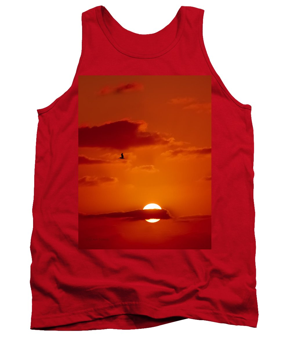 Pelican Tank Top featuring the digital art Dawn Flight by DigiArt Diaries by Vicky B Fuller