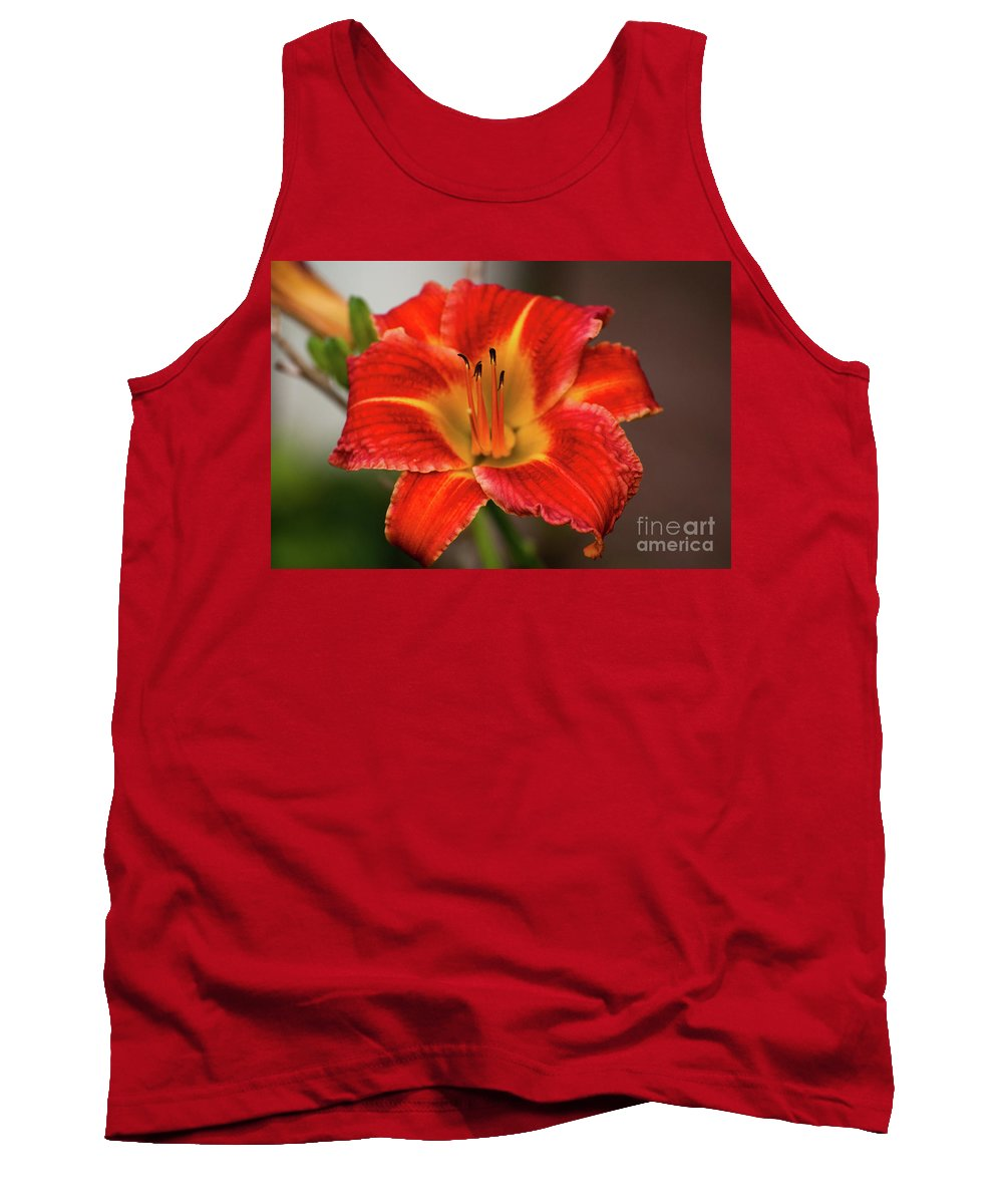 Daylily Tank Top featuring the photograph Daylily by Kevin Gladwell