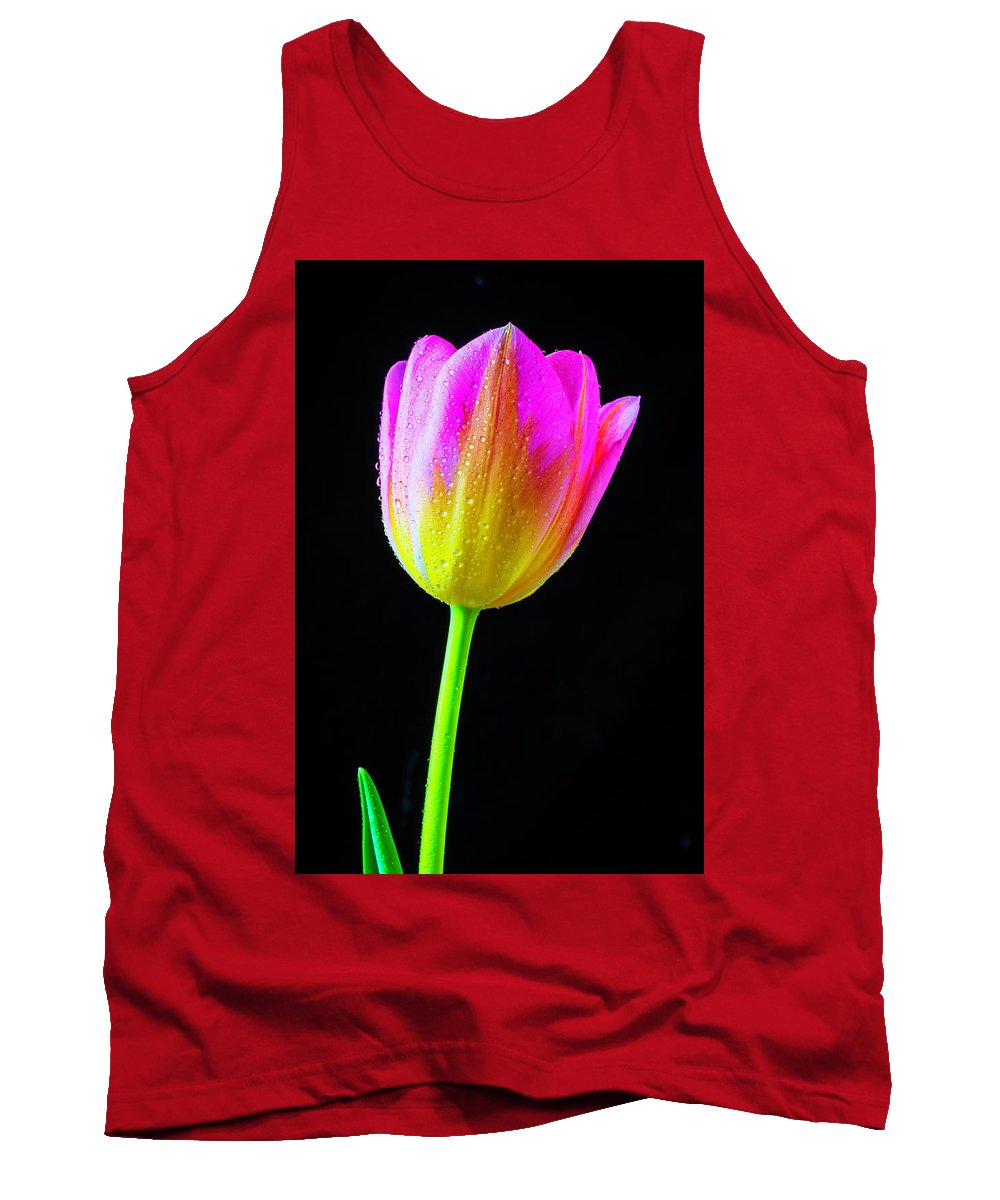 Green Tank Top featuring the photograph Dewy Pink Yellow Tulip by Garry Gay