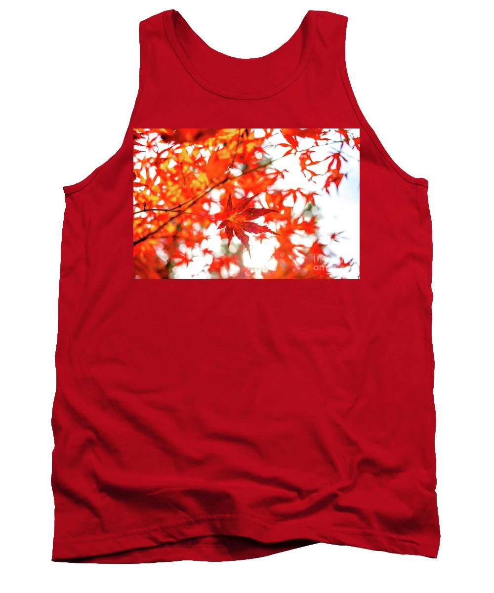 Asia Tank Top featuring the photograph Fall Color Maple Leaves At The Forest In Kochi, Japan by Eiko Tsuchiya