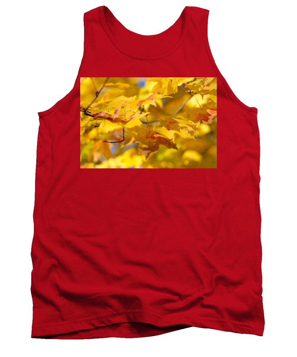 Nature Tank Top featuring the photograph Fall Colors by Sebastian Musial