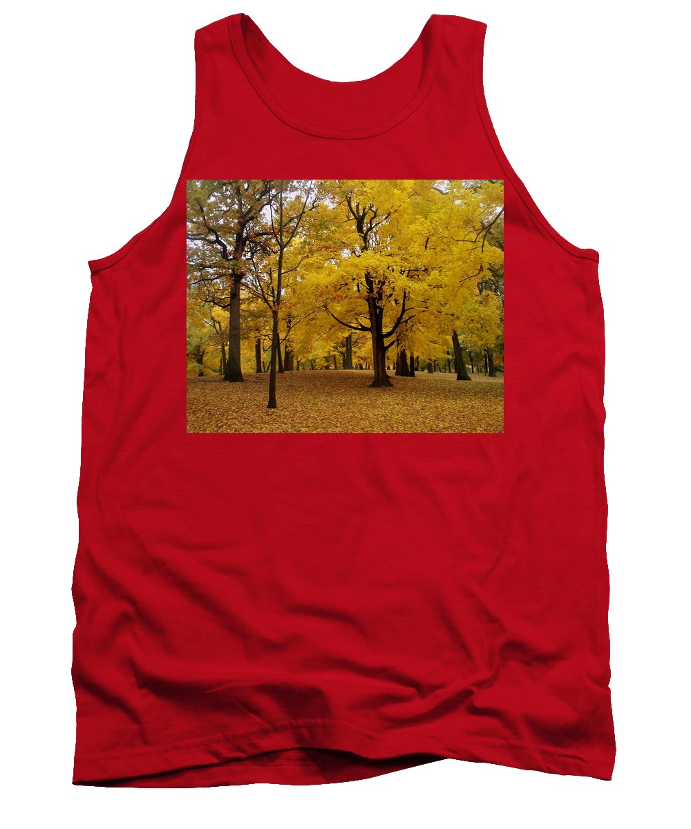 Fall Tank Top featuring the photograph Fall Series 5 by Anita Burgermeister