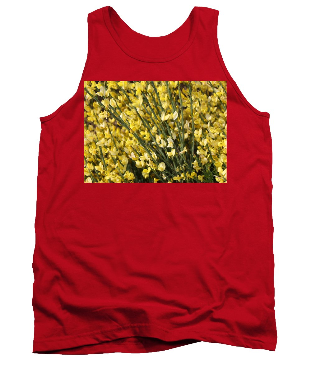 Spring Flowers Tank Top featuring the photograph Forsythia by Carol Groenen