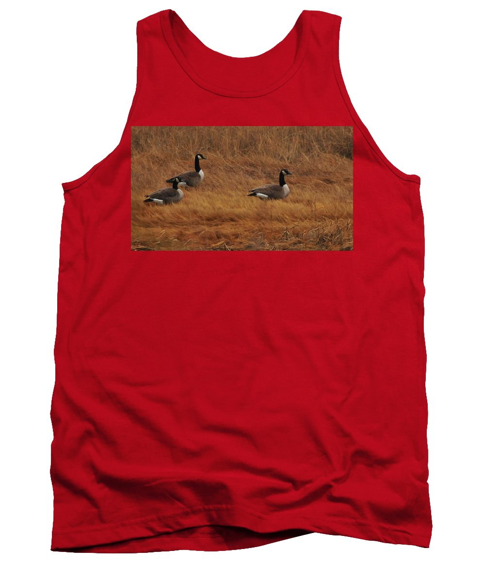 Geese On The Salt Marsh Rock Island Houghs Neck Quincy Ma Tank Top featuring the photograph Geese On The Salt Marsh by Bill Driscoll