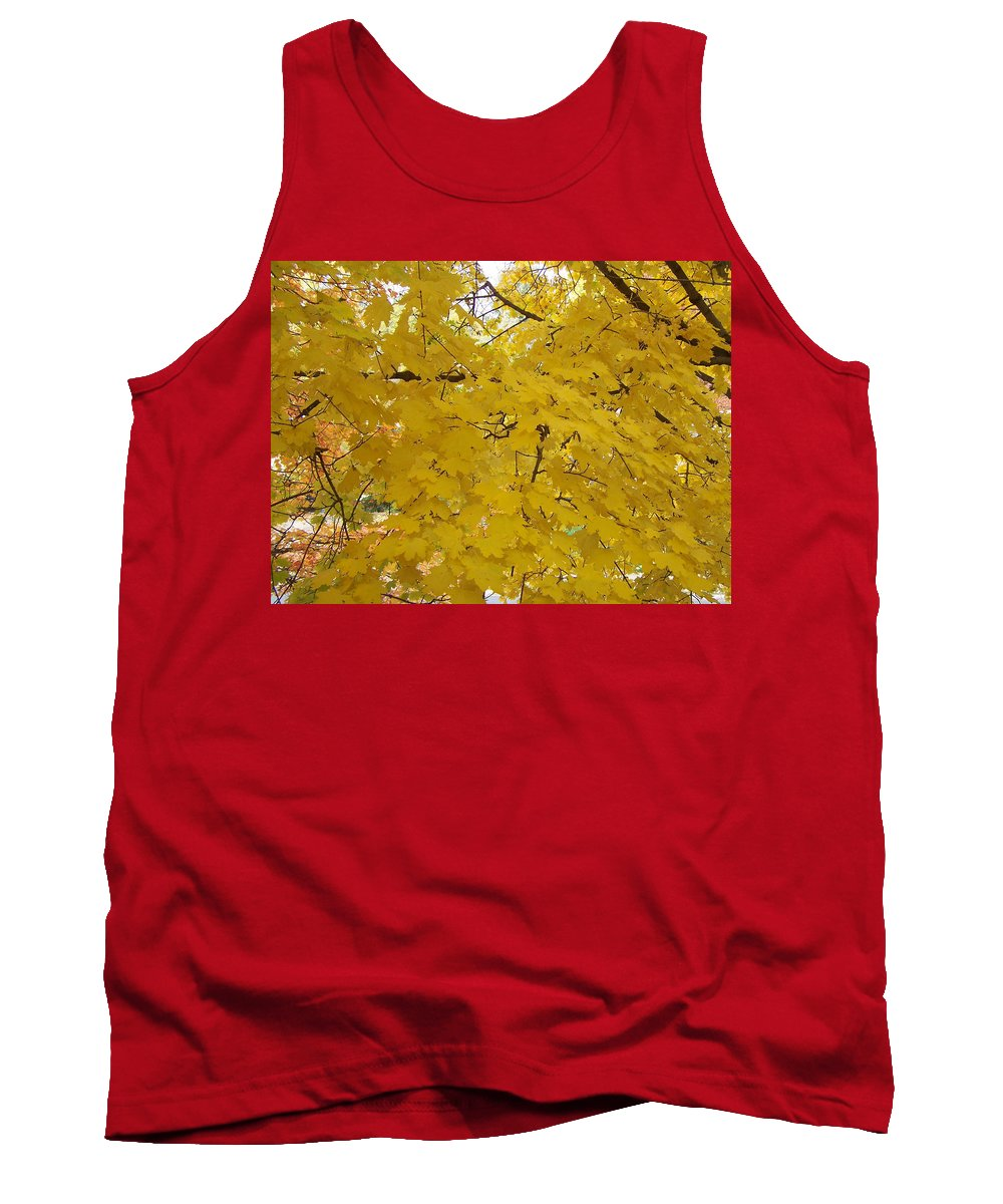 Fall Autum Trees Maple Yellow Tank Top featuring the photograph Golden Canopy by Karin Dawn Kelshall- Best