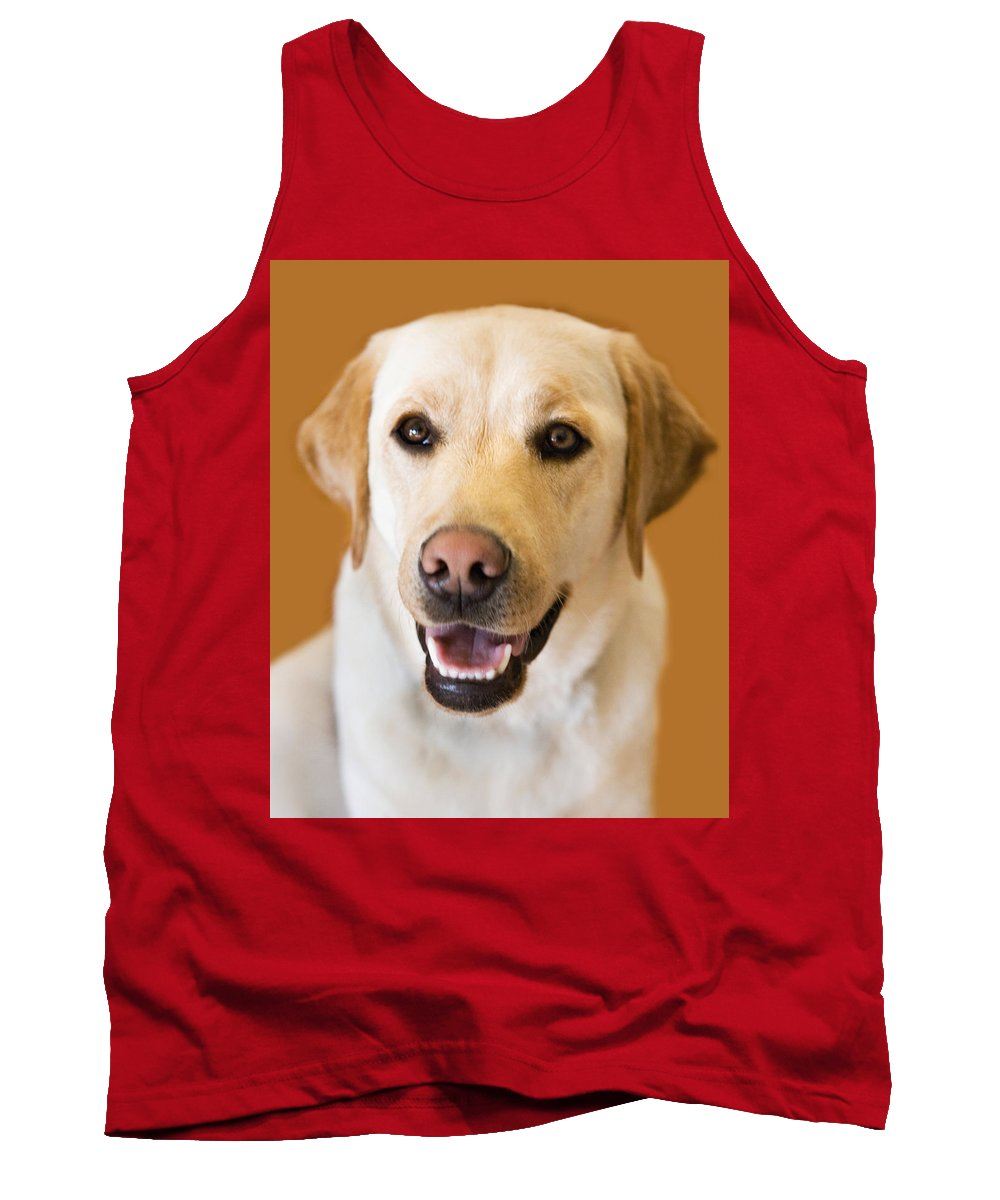 Lab Tank Top featuring the photograph Golden Lab by Marilyn Hunt