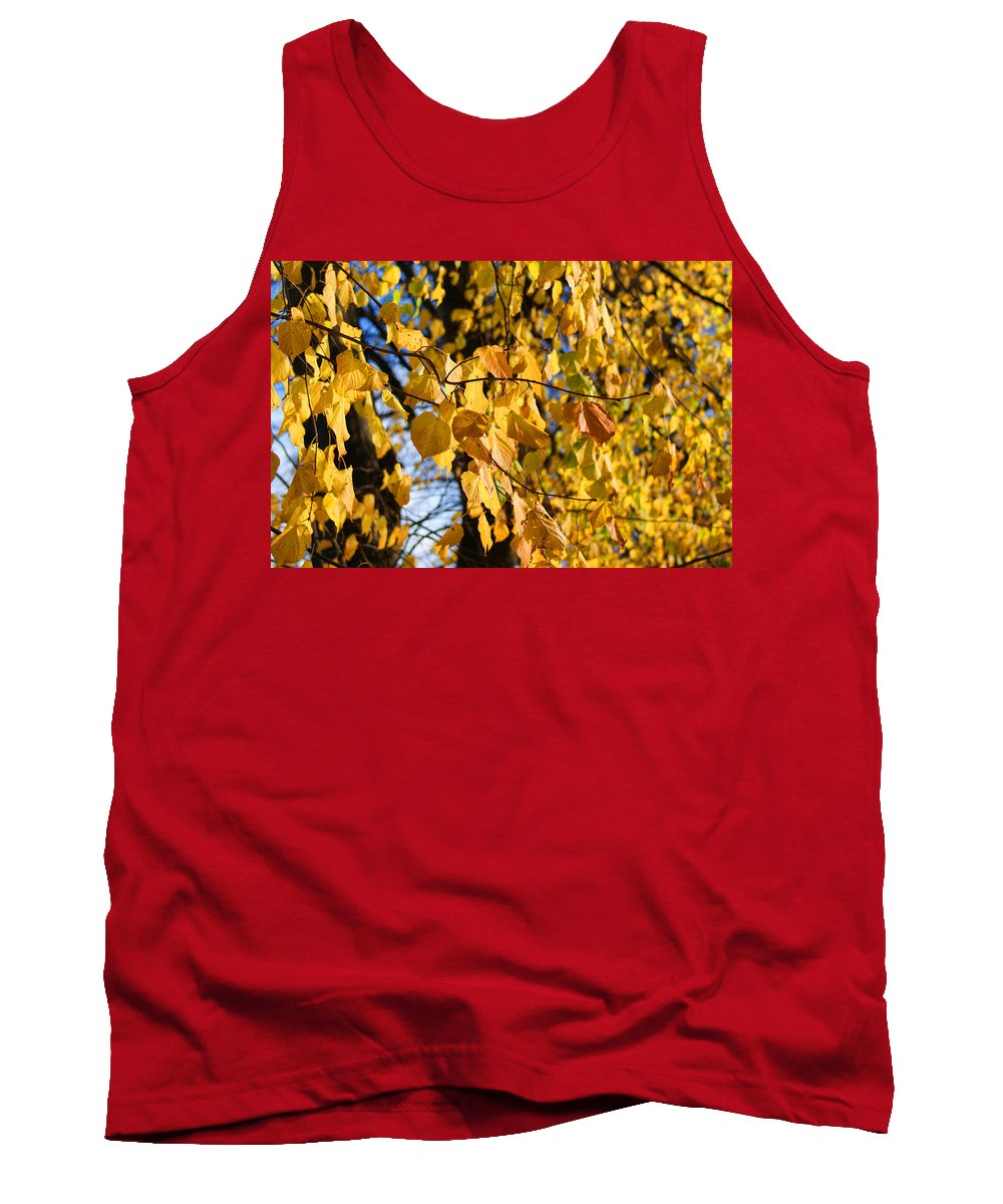 Autumn Tank Top featuring the photograph Golden Leaves by Carol Lynch