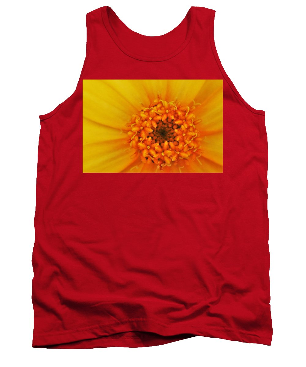 Yellow Flower Tank Top featuring the photograph Hello Sunshine by Kelly Foreman