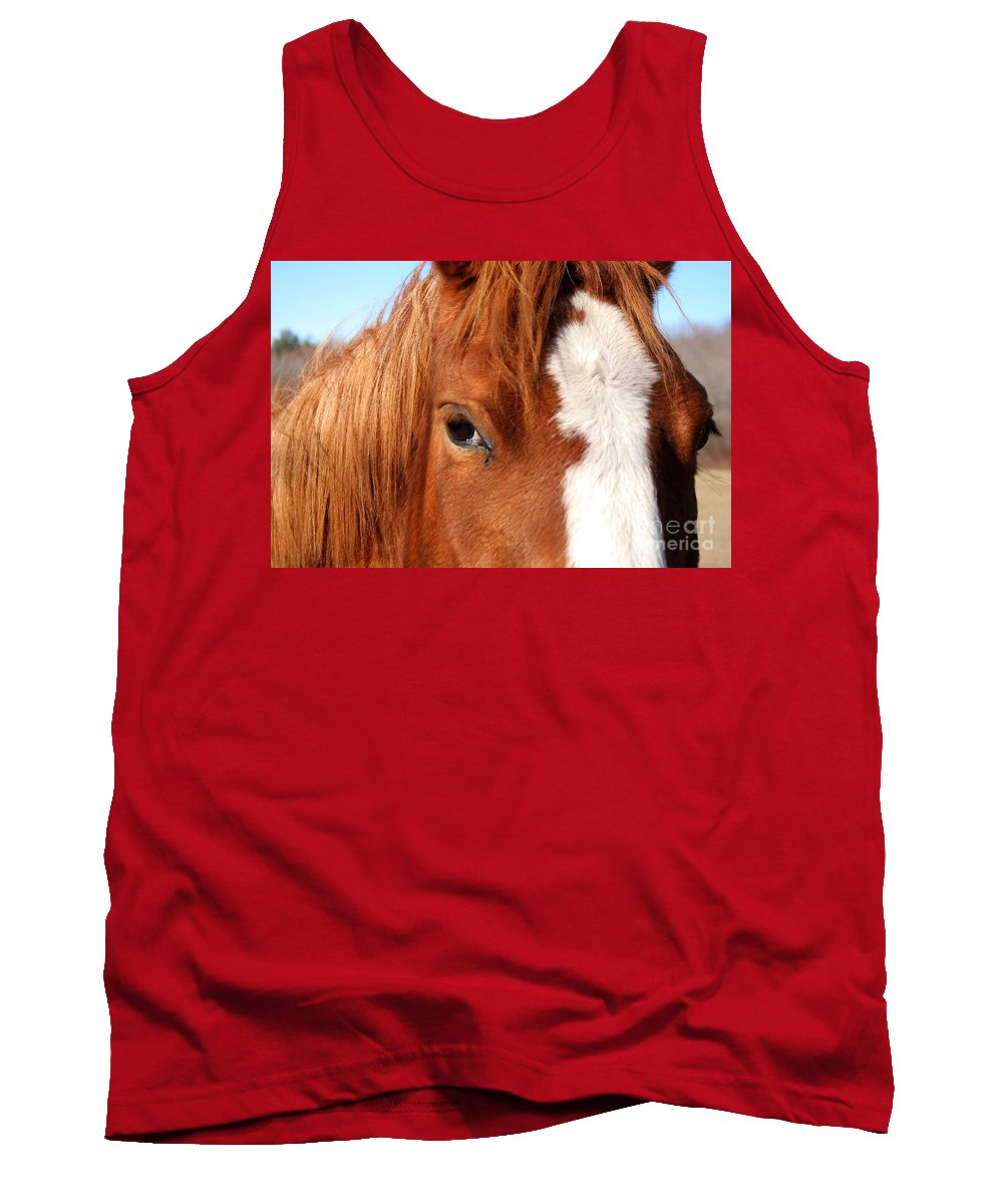 Horse Tank Top featuring the photograph Horse's Mane by Thomas Marchessault
