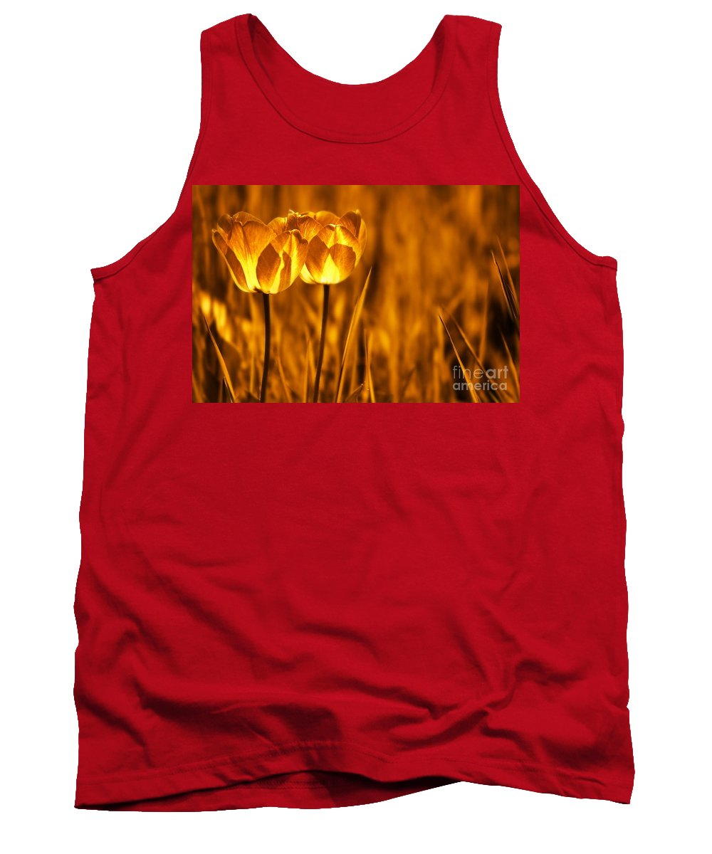 Tulips Tank Top featuring the photograph In A Perfect World by Jacky Gerritsen
