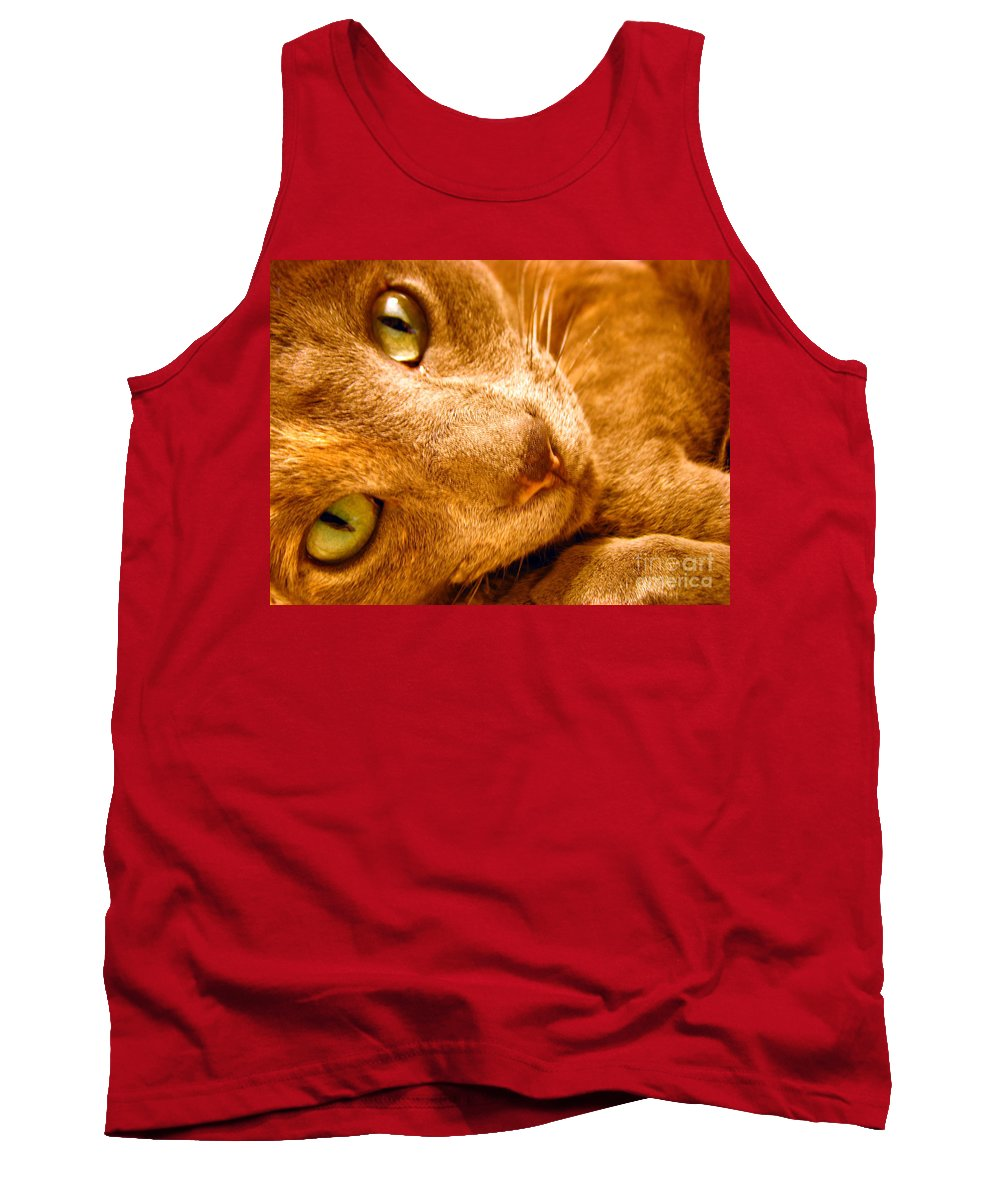 Cats Tank Top featuring the photograph Kitty by Amanda Barcon