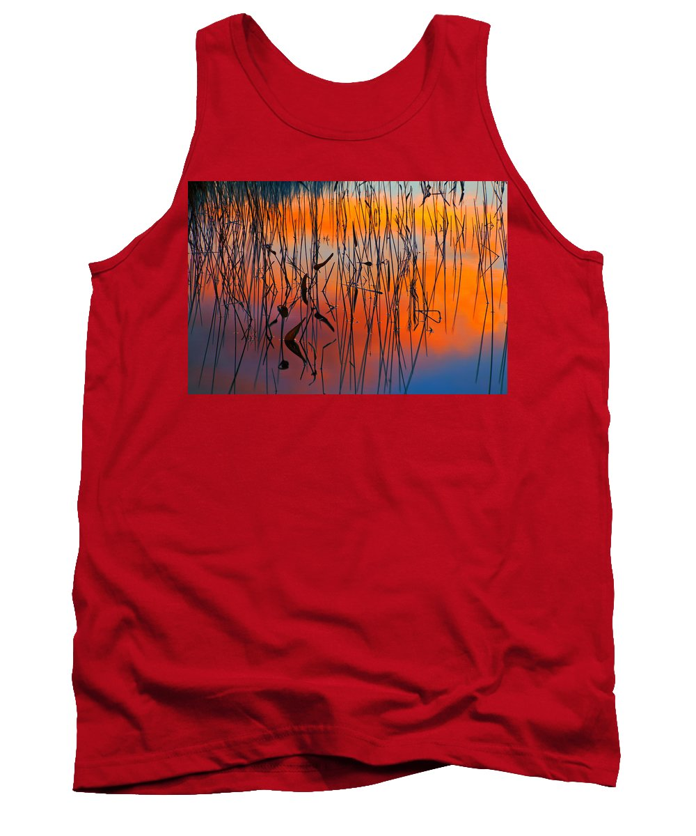 Sunset Tank Top featuring the photograph Lake Reeds And Sunset Colors by Irwin Barrett