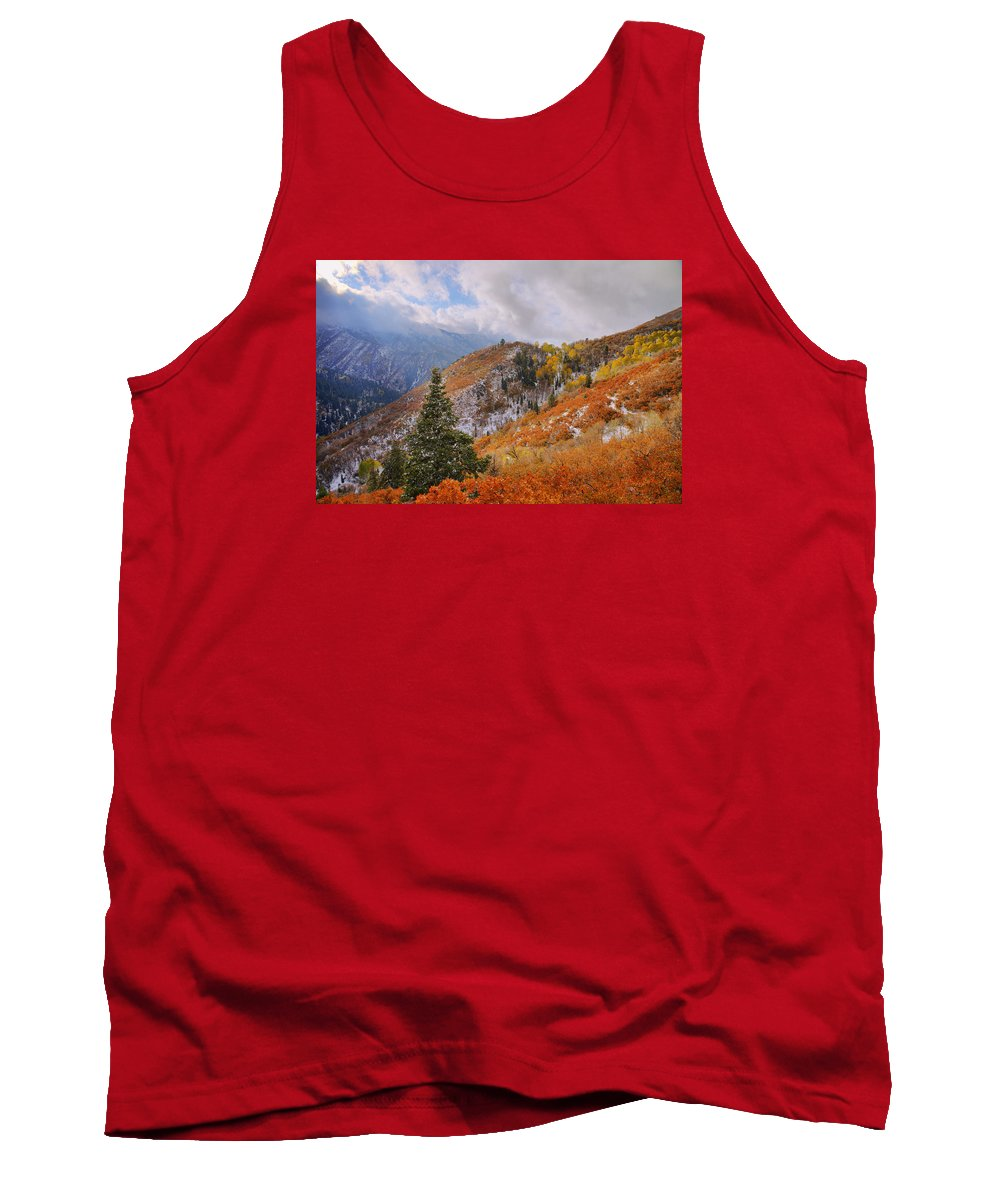 Forest Tank Top featuring the photograph Last Fall by Chad Dutson