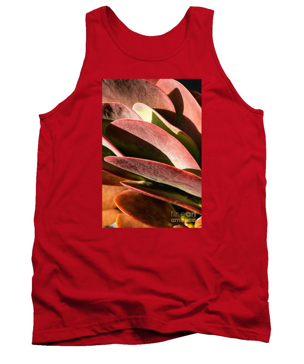 California Tank Top featuring the photograph Late Afternoon 1 by Stefan H Unger