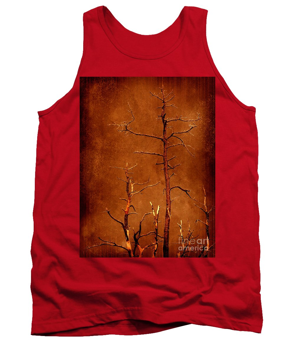 Dipasquale Tank Top featuring the photograph Left Bare And Broken by Dana DiPasquale