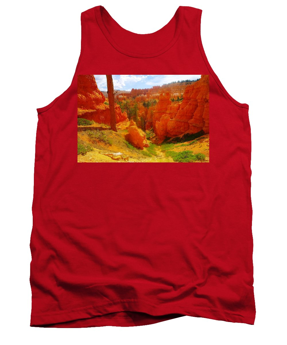 Landscape Tank Top featuring the photograph Looking Down In Bryce by Jeff Swan