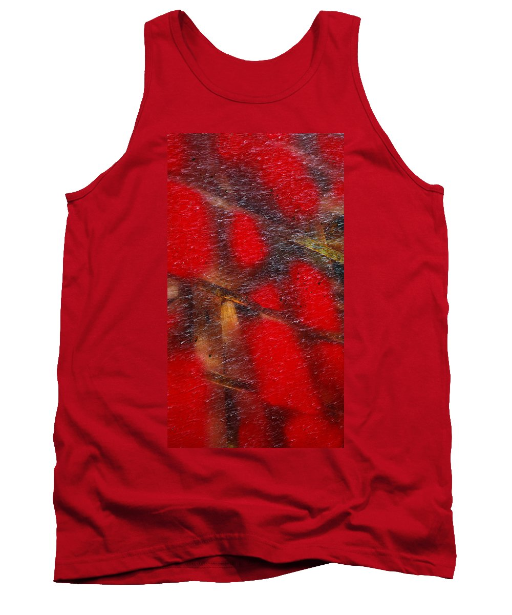 Skip Hunt Tank Top featuring the photograph National Treasure by Skip Hunt