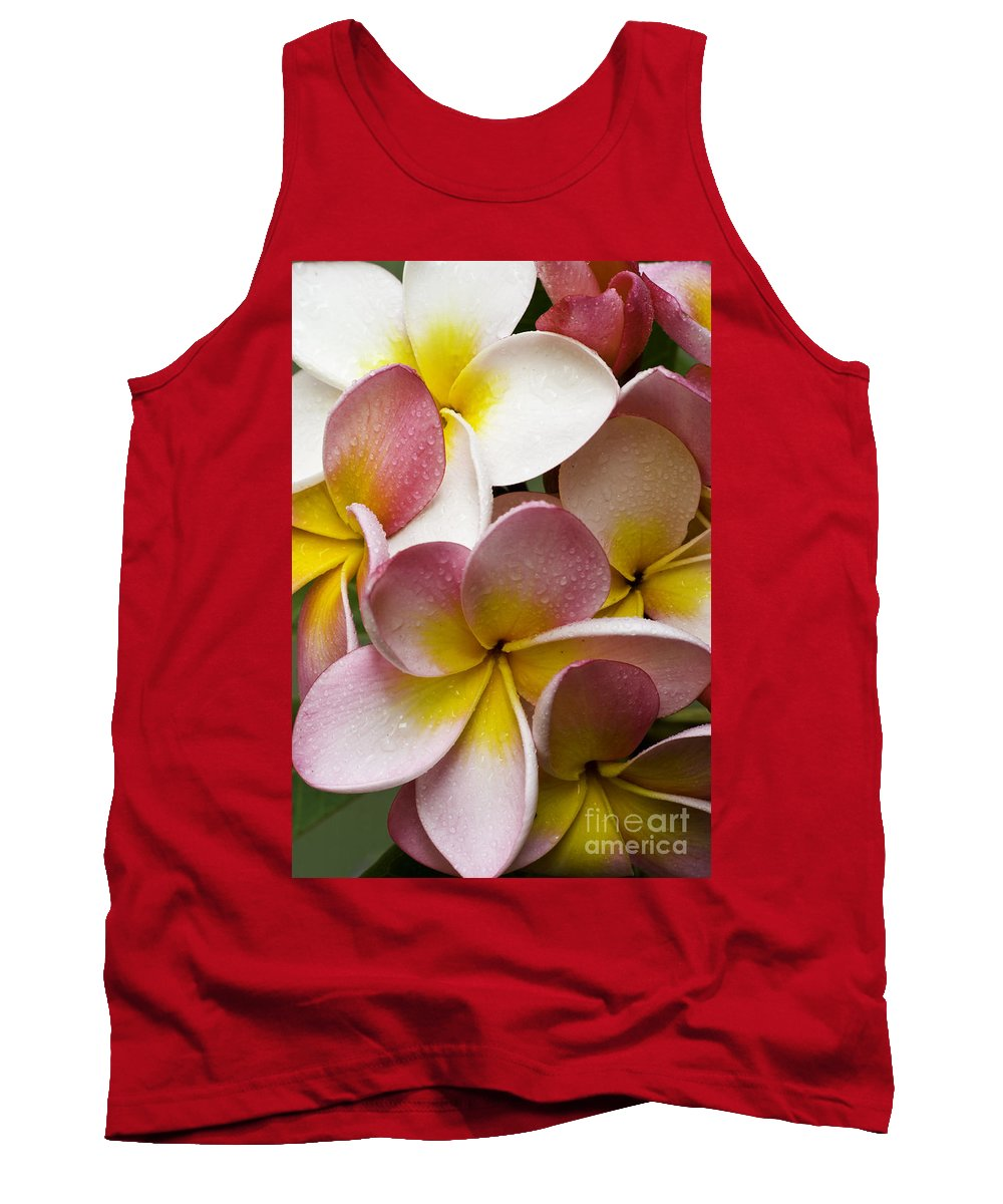 Pink Frangipani Tank Top featuring the photograph Pink Frangipani by Avalon Fine Art Photography