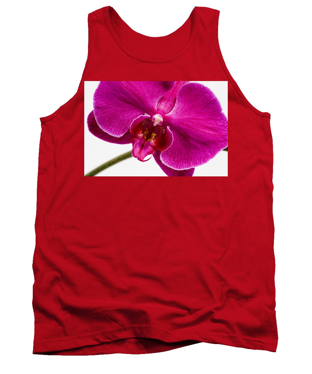 Flower Tank Top featuring the photograph Purple Orchid by Karen Ulvestad