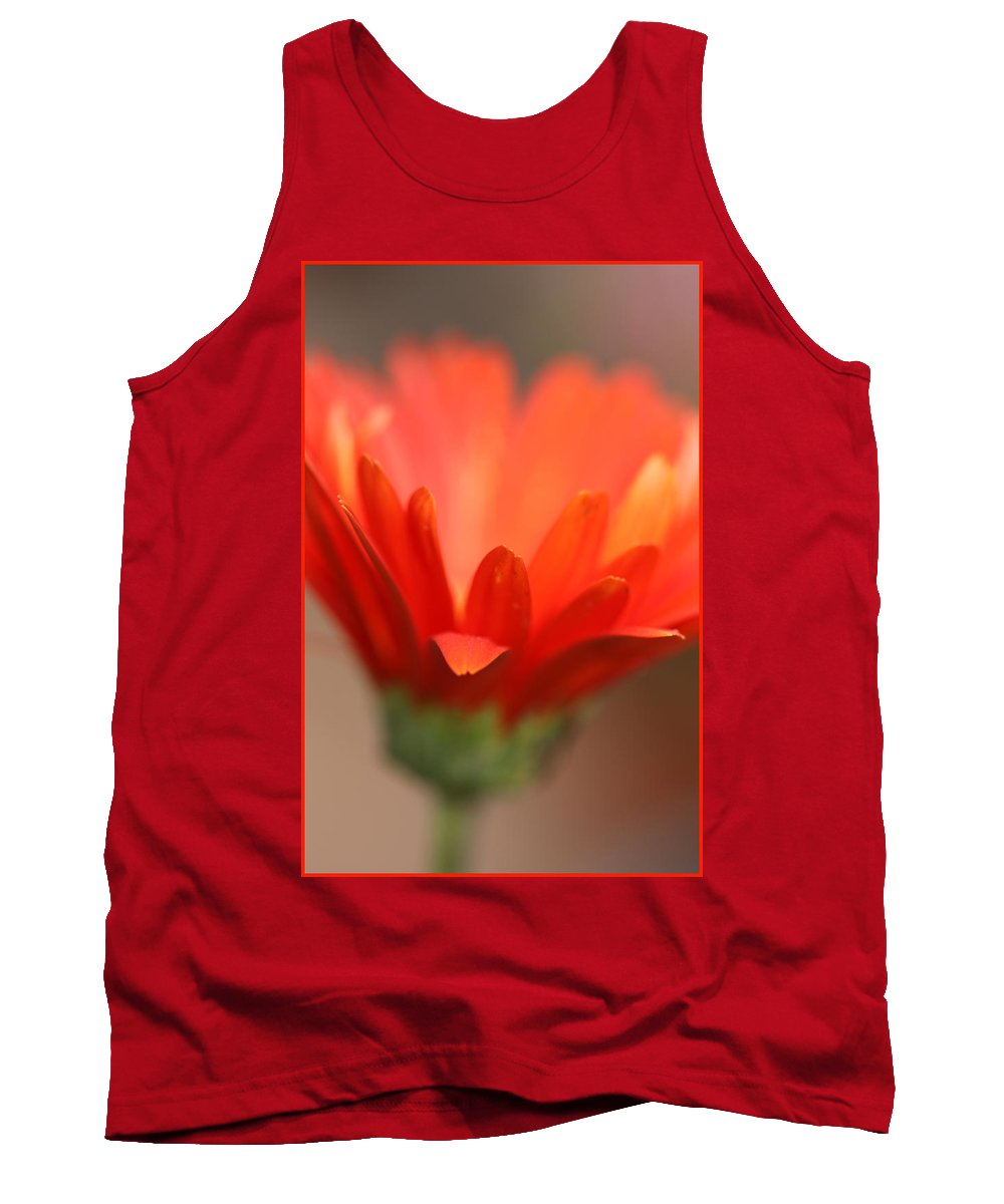Daisy Plant Flower Orange Green Growing Photography Photograph Art Digital Tank Top featuring the photograph Reaching Out by Shari Jardina