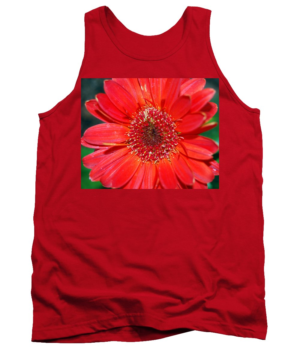 Gerber Tank Top featuring the photograph Red Gerber Daisy by Amy Fose