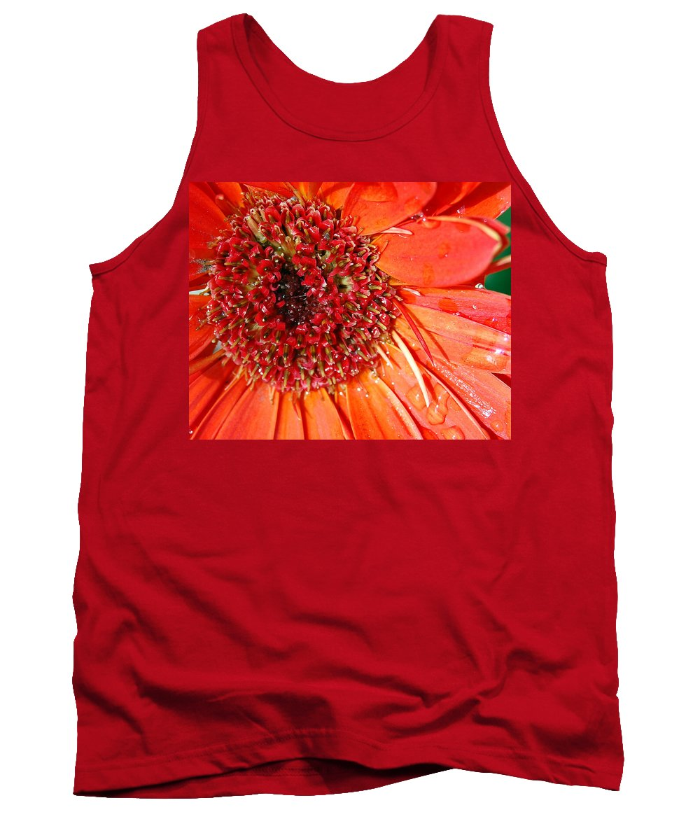Gerber Daisy Tank Top featuring the photograph Red Gerbera Daisy by Amy Fose